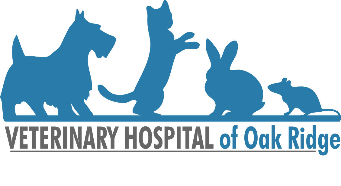 Veterinary Hospital of Oak Ridge logo